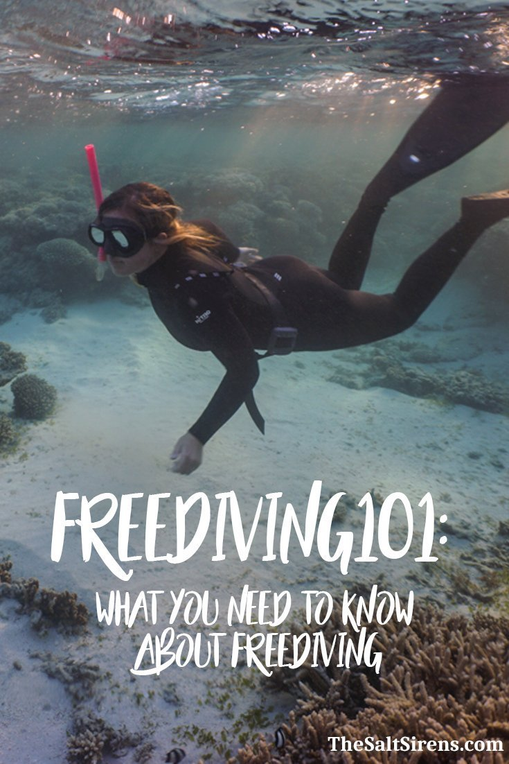 Freediving for beginners -- everything you need to know about freediving including how to get started, how to choose a freediving school, and more.