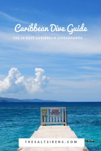 The ultimate dive and liveaboard guide to the Caribbean