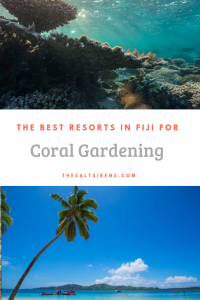 The best resorts in Fiji for coral gardening -- scuba divers will love this!