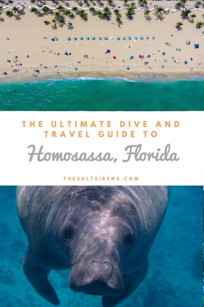 What to do, see, and experience in Homosassa, Florida
