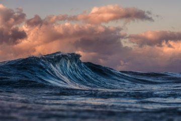 wave surf